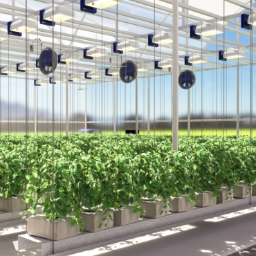 Green House irrigation design